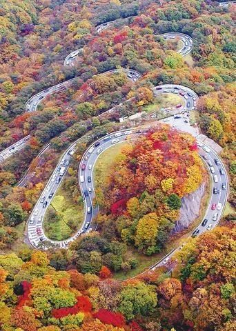 جاده ای در پاییز
